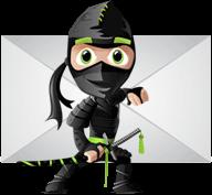 Become An Email Ninja